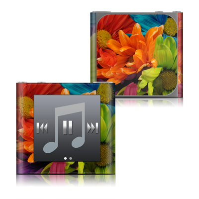 Apple iPod nano (6G) Skin - Colours