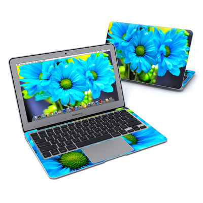 MacBook Air 11in Skin - In Sympathy