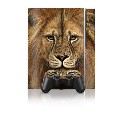 PS3 Skin - Warrior