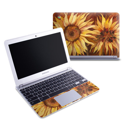 Samsung 11-6 Chromebook Skin - Autumn Beauty