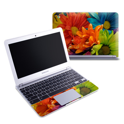 Samsung 11-6 Chromebook Skin - Colours