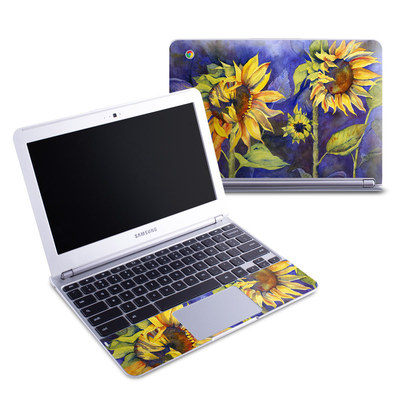 Samsung 11-6 Chromebook Skin - Day Dreaming