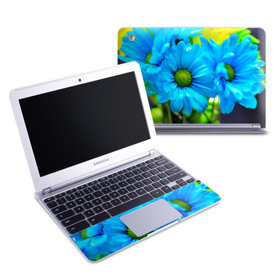 Samsung 11-6 Chromebook Skin - In Sympathy