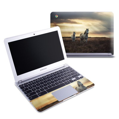 Samsung 11-6 Chromebook Skin - Hornless Unicorns