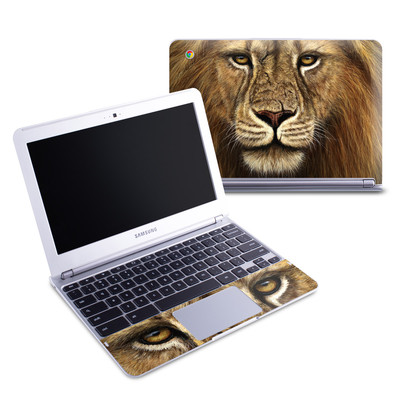 Samsung 11-6 Chromebook Skin - Warrior