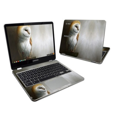Samsung Chromebook Plus 2017 Skin - Barn Owl