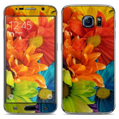 Samsung Galaxy S6 Skin - Colours