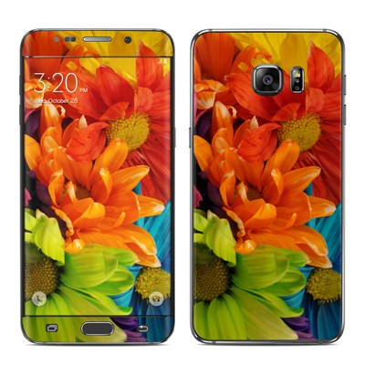 Samsung Galaxy S6 Edge Plus Skin - Colours