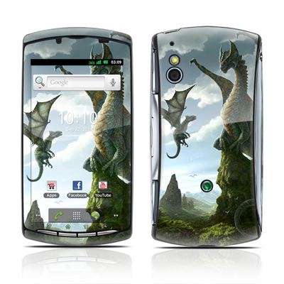Sony Ericsson Xperia Play Skin - First Lesson